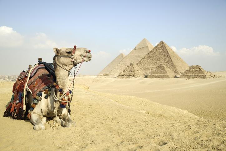 giza-pyramid-with-camel